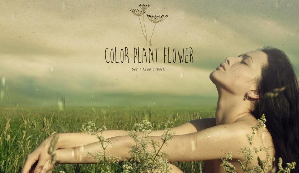 Color Planta Flower, lo último en coloración natural
