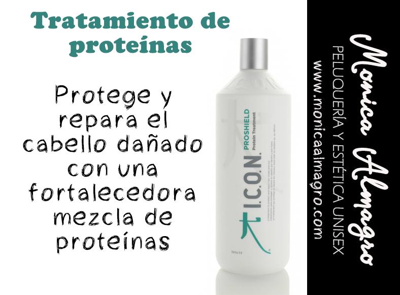 peluquerias palma, tratamientos proteinas